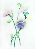 Beautiful flower painting Stock Photo