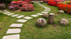 Beautiful flower and path. In garden Royalty Free Stock Photo