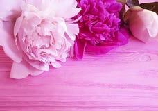 Beautiful flower peony romantic on pink wooden background. frame. Beautiful flower peony on pink wooden background frame romantic stock photo