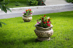 Beautiful flower pot. The Beautiful flower pot decorating lawn Stock Image
