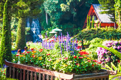 Beautiful flower pot in garden Stock Photos