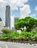 Beautiful flower pots on street in downtown of Singapore. Skyscrapers and other modern buildings are visible in background. Scenic summer cityscape. Singapore royalty free stock images
