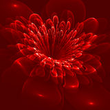Beautiful flower on red background. Computer generated graphics. Royalty Free Stock Photo