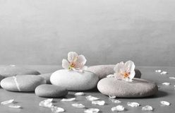 Flower and stone zen spa on grey background. Beautiful flower and stone zen spa on grey background Stock Image