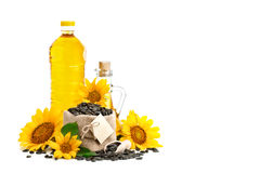 Beautiful flower, sunflower, sunflower oil and roasted sunflower seeds on a white background. An isolated object Royalty Free Stock Photo