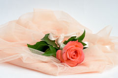 Beautiful flower and tissue composition Stock Photography