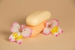 Beautiful flower and two pieces of the soap Stock Photo