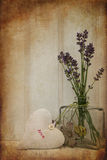 Beautiful flower in vase with heart still life love concept Royalty Free Stock Photography