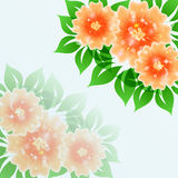 Beautiful flower vector blue  background illustrat Stock Photos