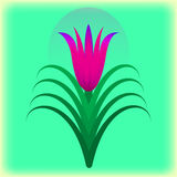 Beautiful flower. Flower. Vector illustration. Design element Royalty Free Stock Photos