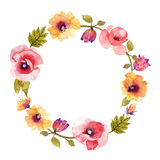 Beautiful flower watercolor wreath Stock Images