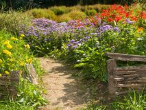 Beautiful flowerbed behind rural retro fences Stock Photo