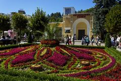 Beautiful flowerbed in Kislovodsk Royalty Free Stock Photography