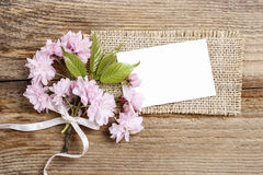 Beautiful flowering almond (prunus triloba) on wooden background Stock Image