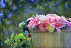 Beautiful flowers arrangement in wood bucket with blurry backgro Stock Photography