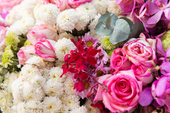 Beautiful flowers assortment royalty free stock images