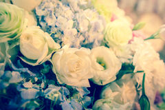 Beautiful flowers background. - (Mood and tone / Selective focus. ) Stock Photo