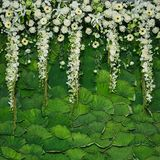 Beautiful flowers background for wedding Royalty Free Stock Image