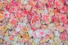 Beautiful flowers background for wedding Royalty Free Stock Images