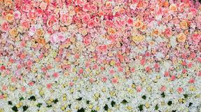 Beautiful flowers background for wedding Stock Images