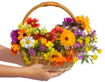 Beautiful flowers in a basket royalty free stock images