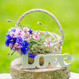 Beautiful flowers in the basket and word Love Royalty Free Stock Photos