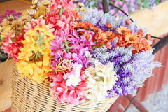 Beautiful flowers in bicycle basket Royalty Free Stock Photography