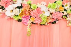 Beautiful flowers blossom on pink curtain backgrou Royalty Free Stock Photography