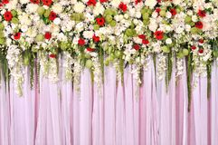 Beautiful flowers blossom on pink curtain Stock Image