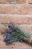 Beautiful, Flowers, Bricks stock photo
