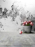 Beautiful flowers in a bucket Royalty Free Stock Photos