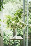 Beautiful flowers bunch with blossom acacia branches in white vase in living room at window. Interior design and ideas . Still life royalty free stock photo
