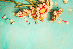 Beautiful flowers bunch on a turquoise shabby chic background , top view, border. Festive greeting or invitation card Royalty Free Stock Image