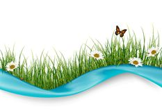 Beautiful flowers and butterflies. Illustration of Beautiful flowers and butterflies Stock Photos