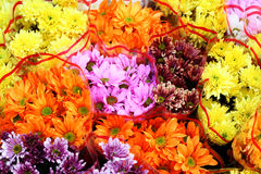 Beautiful Flowers with colorful. At thai markets Stock Photo