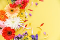 Beautiful flowers decorate on yellow background top view / Colorful flower various types royalty free stock photos