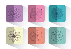 Beautiful flowers design. Icon set of beautiful flowers over colorful squares and white background, vector illustration Stock Images