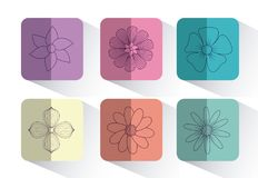 Beautiful flowers design. Icon set of beautiful flowers over colorful squares and white background, vector illustration Stock Photo
