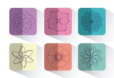 Beautiful flowers design. Icon set of beautiful flowers over colorful squares and white background, vector illustration Royalty Free Stock Photos