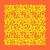 Yellow flowers on an orange background Stock Photos