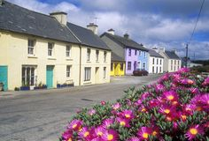 Beautiful flowers And Eyeries Village, West Cork, Ireland Royalty Free Stock Photos