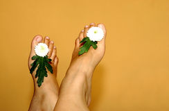 Beautiful flowers and famele foots Royalty Free Stock Image