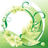 Beautiful flowers frame Stock Images