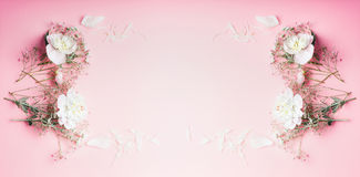Beautiful flowers frame on pastel pink background, top view, banner. Festive greeting concept stock images