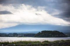 Beautiful flowers full bloom beside Lake Kawaguchi near Mount Fuji Japan.  stock photos