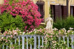 Beautiful houses and gardens in Venice, Italy. Beautiful flowers and gardens in Venice, Italy royalty free stock photography
