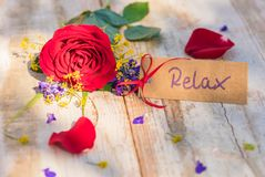 Gift card, voucher or coupon for Relax with flowers for Valentines Day or Mothers Day present. Beautiful flowers with gift card, voucher or coupon for Relax royalty free stock photo