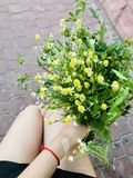 Beautiful flowers in hands stock photos