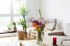 Beautiful flowers, interior decor Stock Photos