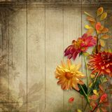 Beautiful flowers and leaves on a vintage wooden board with space for text royalty free illustration